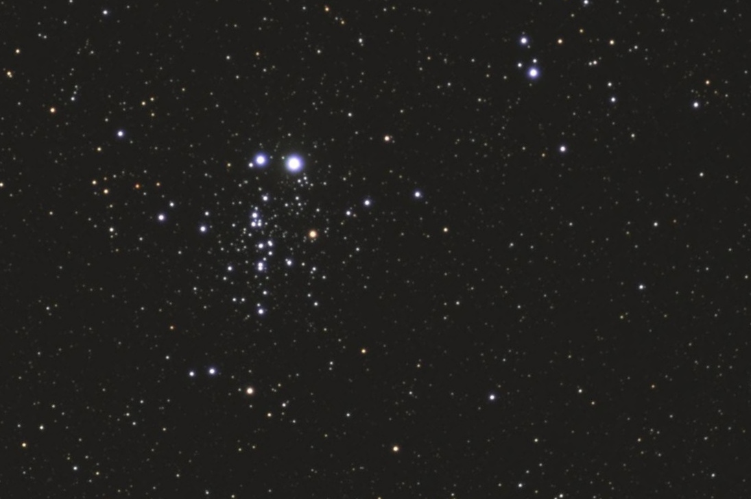 The Owl Cluster